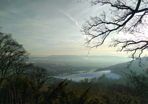 View towards Pyrmont